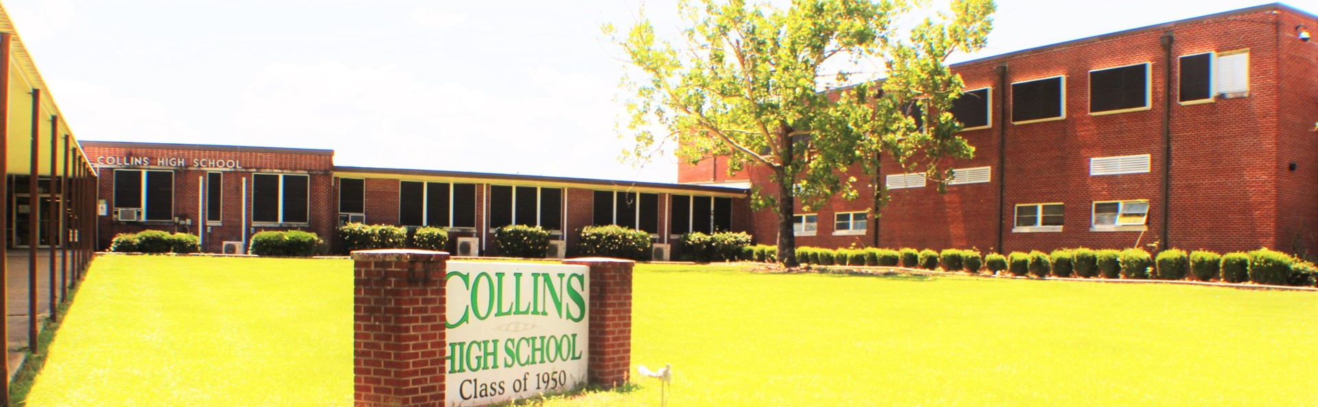 Collins High